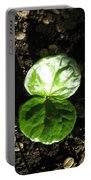 Coffee Plant The Shiny Thick Green Butterfly Look Plant Gives The Great Promise Of A Cash Crop To Th Portable Battery Charger