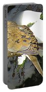 Cold Dove Portable Battery Charger