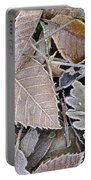 Cold Leaves Portable Battery Charger