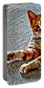 Cole Kitty Portable Battery Charger