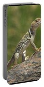 Collared Lizard Portable Battery Charger