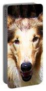 Collie Dog Art - Sunshine Portable Battery Charger