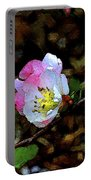 Color 131 Portable Battery Charger