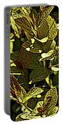 Color Engraving 1 Portable Battery Charger