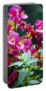 Color Explosion Portable Battery Charger