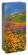 Color Filled Hills Portable Battery Charger