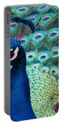 Color Me Peacock Portable Battery Charger