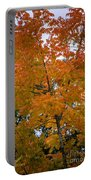 Color Of Fall Portable Battery Charger