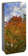 Color To The Sky Portable Battery Charger