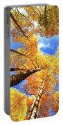 Colorado Autumn Sky Portable Battery Charger