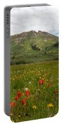 Colorado Meadow And Mountain Landscape Portable Battery Charger