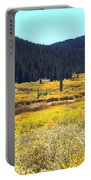 Colorado River Valley In Fall Portable Battery Charger