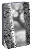 Colorado White Birch Trees In Black And White Portable Battery Charger
