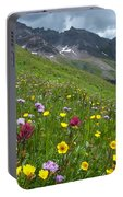 Colorado Wildflowers And Mountains Portable Battery Charger