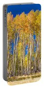 Colorful Aspen Panorama Portable Battery Charger
