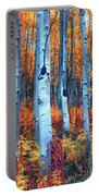 Colorful Aspens Portable Battery Charger
