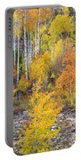 Colorful Autumn Forest In The Canyon Of Cottonwood Pass Portable Battery Charger