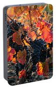 Colorful Autumn Grapes Portable Battery Charger