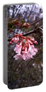 Colorful Blooming Portable Battery Charger