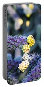 Colorful Cactus Red Purple Green Yellow Plant Fine Art Photography Print  Portable Battery Charger