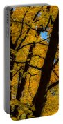 Colorful Canopy Portable Battery Charger