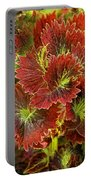 Colorful Coleus Portable Battery Charger