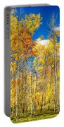 Colorful Colorado Autumn Aspen Trees Portable Battery Charger
