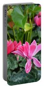 Colorful Cyclamen Portable Battery Charger