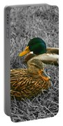 Colorful Ducks Portable Battery Charger