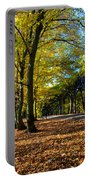 Colorful Fall Autumn Park Portable Battery Charger