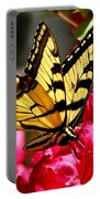Colorful Flying Garden Portable Battery Charger