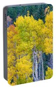 Colorful Forest Portable Battery Charger