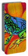 Colorful Frog Portable Battery Charger