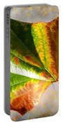Colorful Leaf On The Ground Portable Battery Charger