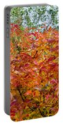 Colorful Leaves In Autumn Portable Battery Charger