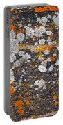 Colorful Moss Spots On A Gneiss Rock Portable Battery Charger