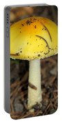Colorful Mushroom Portable Battery Charger
