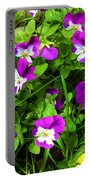 Colorful Pansies Portable Battery Charger