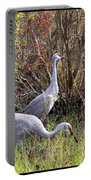 Colorful Sandhill Crane Collage Portable Battery Charger