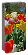 Colorful Tulips Portable Battery Charger