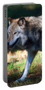 Colorful Wolf Portable Battery Charger