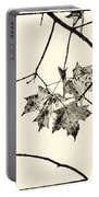 Colorless Autumn Portable Battery Charger