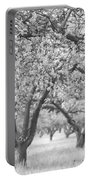 Colorless Cherry Blossoms Portable Battery Charger