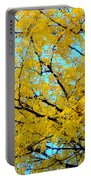 Colors Of Fall 1 Portable Battery Charger