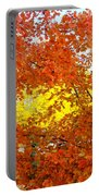 Colors Of Fall 2 Portable Battery Charger