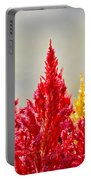 Colourful Plants Portable Battery Charger