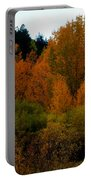 Colours In A Season Portable Battery Charger