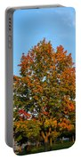 Colours Of Autumn Portable Battery Charger