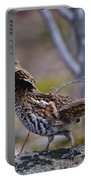 Coltsfoot Ruffed Grouse Portable Battery Charger