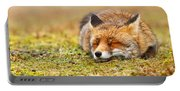 Comfortably Fox Portable Battery Charger